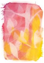 Spiel der Blätter im Licht, arteschocken Postkarte von Erika Genser