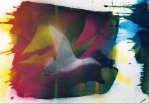 Auf leichten Schwingen, arteschocken Postkarte von Erika Genser