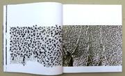 Schriftspiele, Denise Lach, Experimentelle Kalligraphie, Beispiel 3
