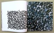 Schriftspiele, Denise Lach, Experimentelle Kalligraphie, Beispiel 5